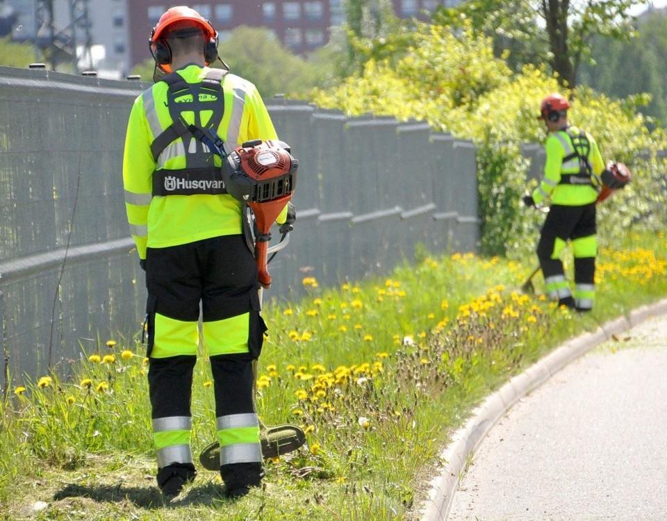 människor klipper gräs vid en vägkant