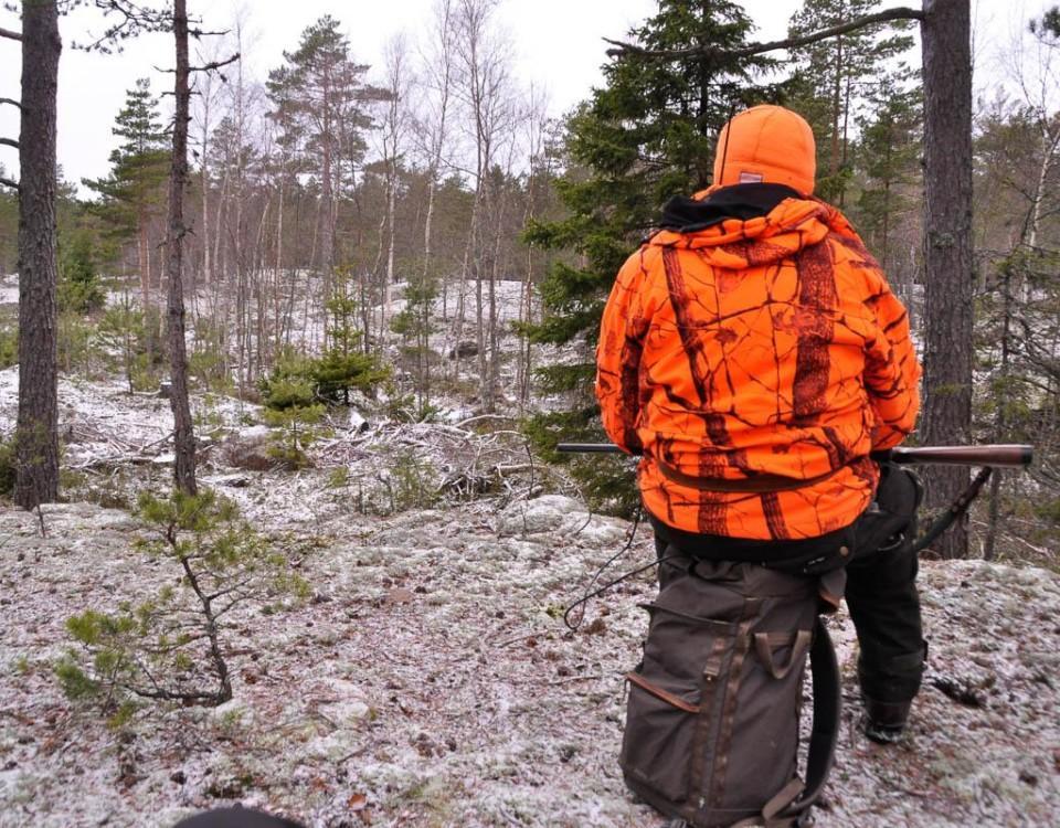 En jägare i skogen