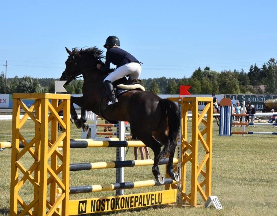 häst som hoppar