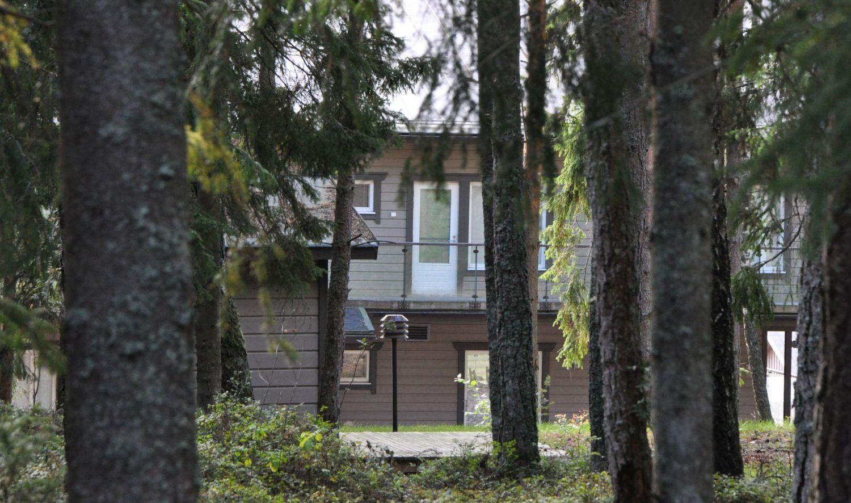 ett hus skymtar bakom granar
