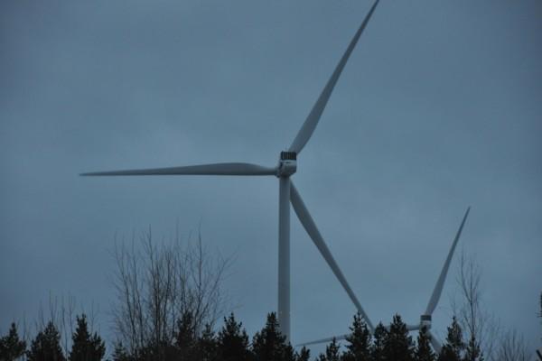 vindkraftverk syns ovan skogen
