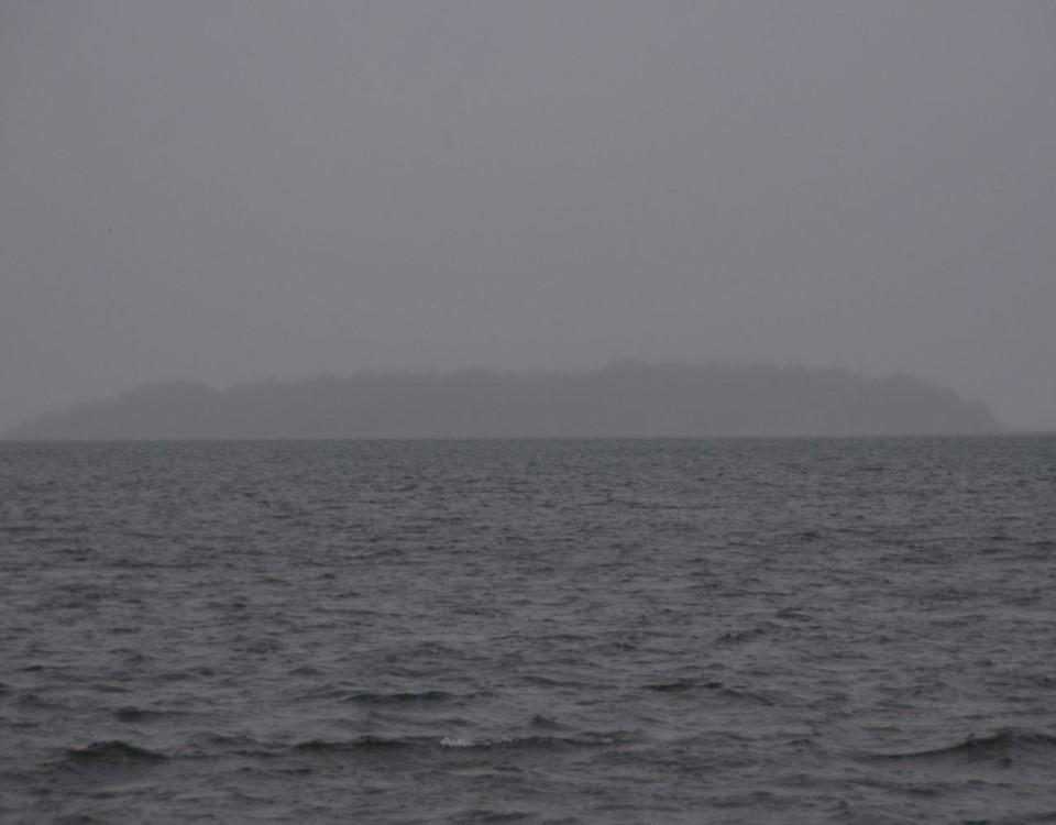 Disigt hav.