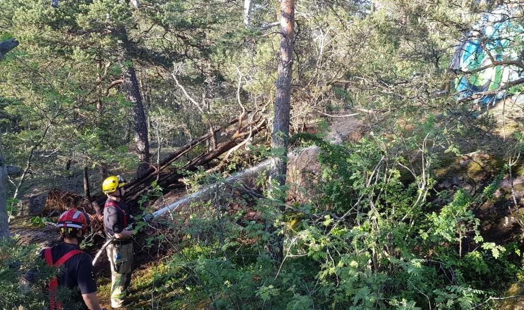 Brandmän släcker brand i skogen