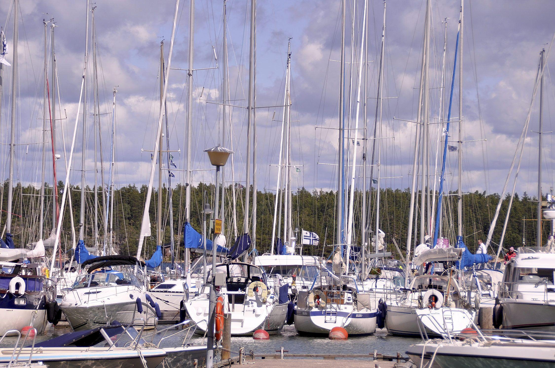 hamn fylld av segelbåtar