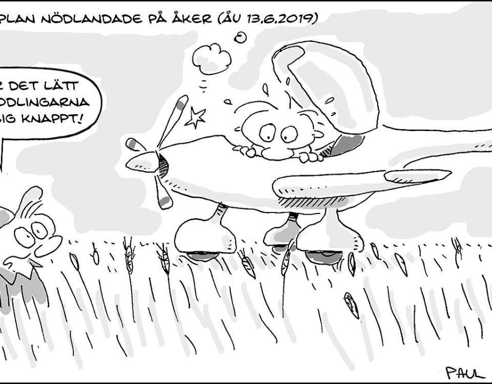 Litet flygplan har landat på åker