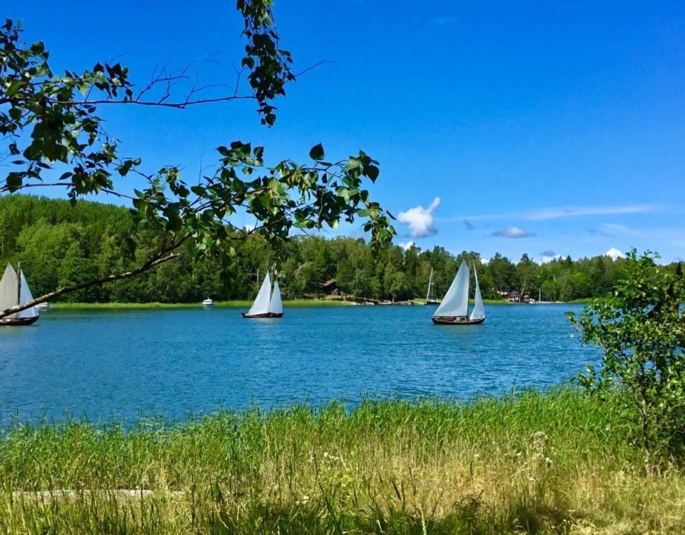 Allmogebåtar seglar i strålande väder.