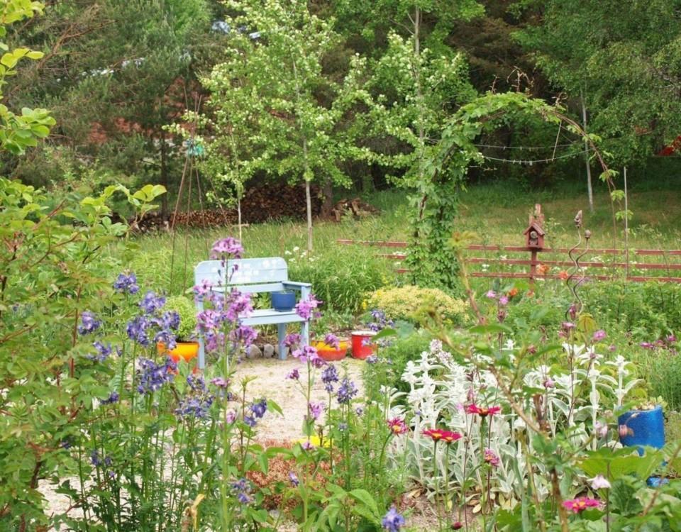 Färggranna blommor, träd, buskar och en bänk.