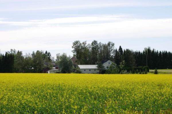 Patis är vidsträckt, med mycket landsbygd och flera små byar.