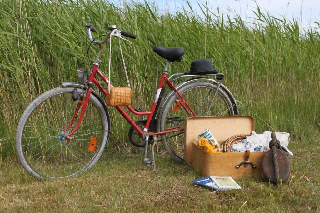En cykel och några lådor med gamla grejer står på en gräsmatta.