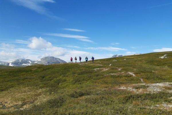 Fem personer vandrar längs ett kalt fjäll under en blå himmel.