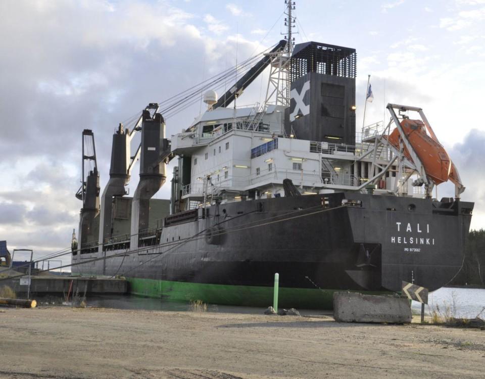 stort fartyg lastar i en hamn