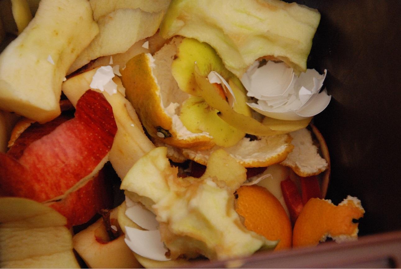 bioavfall, fruktskal