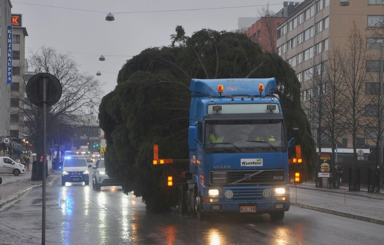 Jättegran på lastbil i stadstrafik