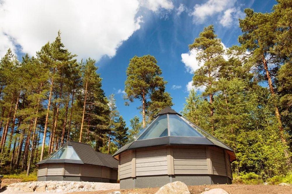 Två låga avlånga kojor med glasade tak står bredvid varandra i en skog.
