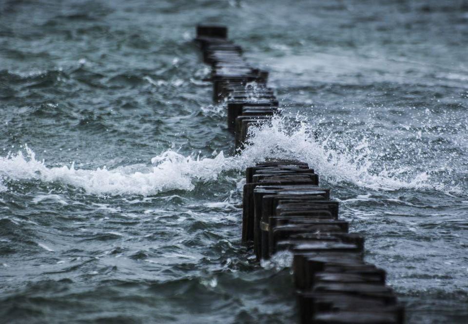 Vågor över stockar i vattnet.