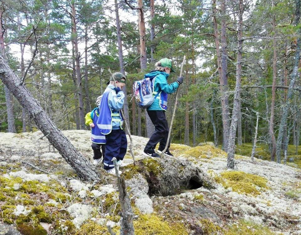 barn som vandrar över en klippa i skogen