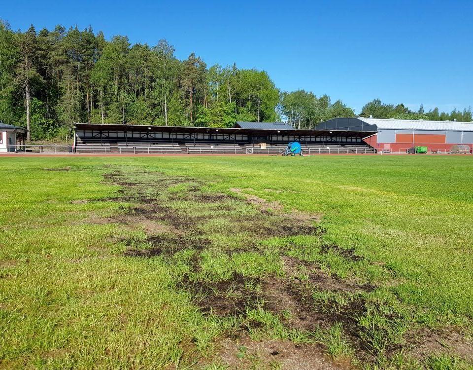gräsmatta som ser trasig ut, fotbollsplan
