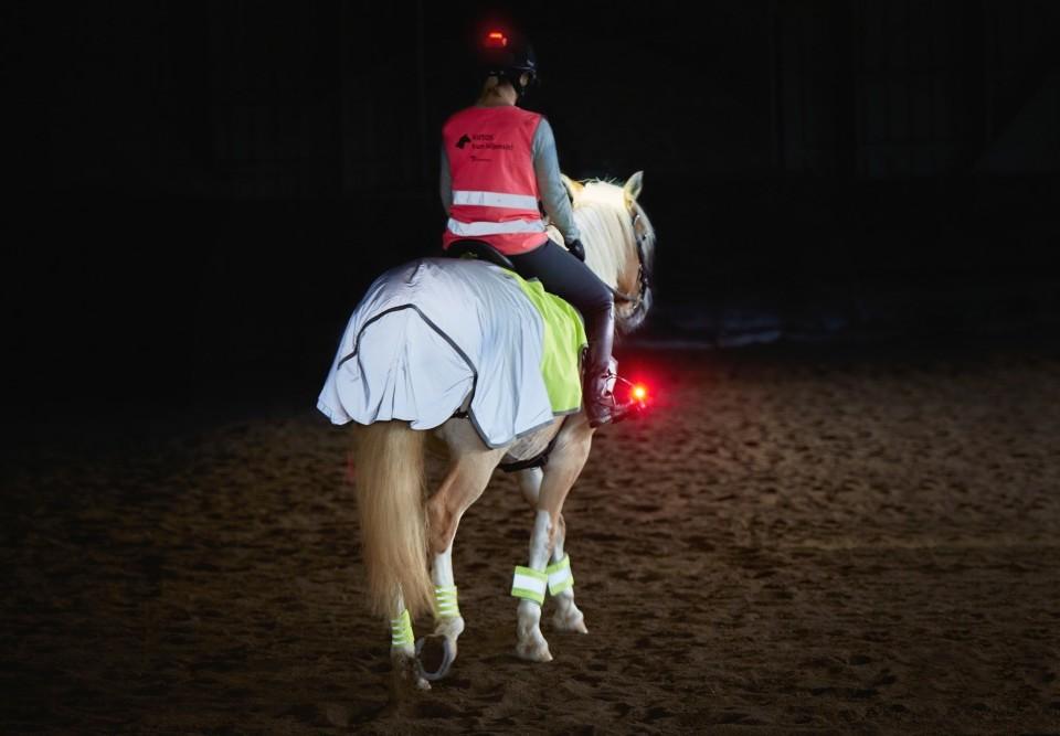 Häst och ryttare försedda med reflex och lampa