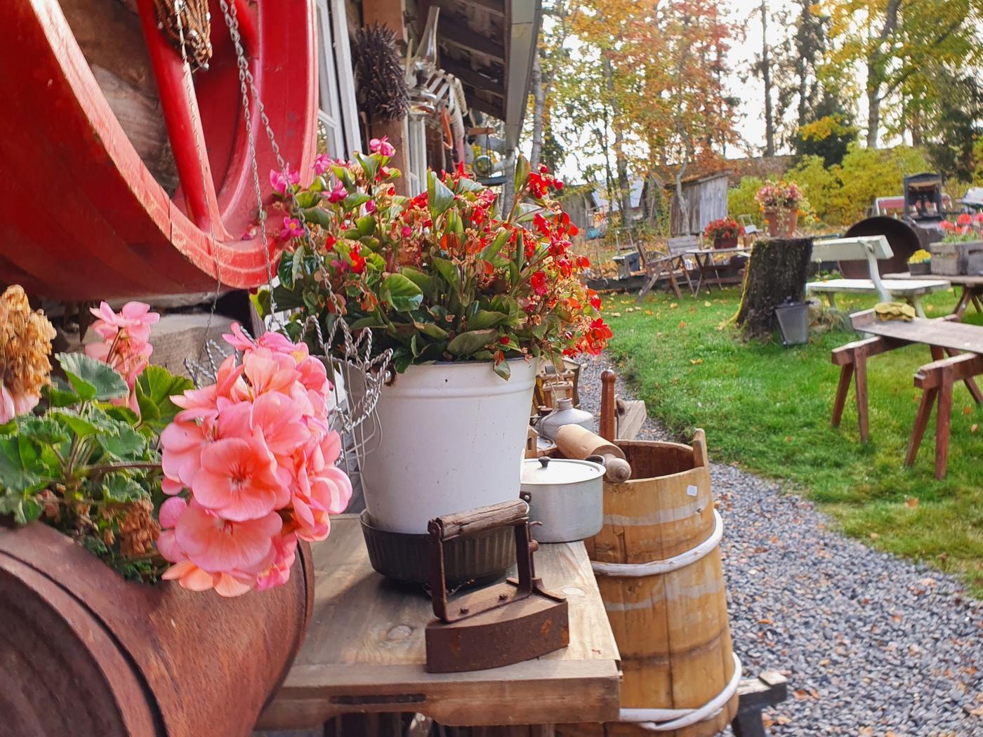 Blommor och vagnshjul.