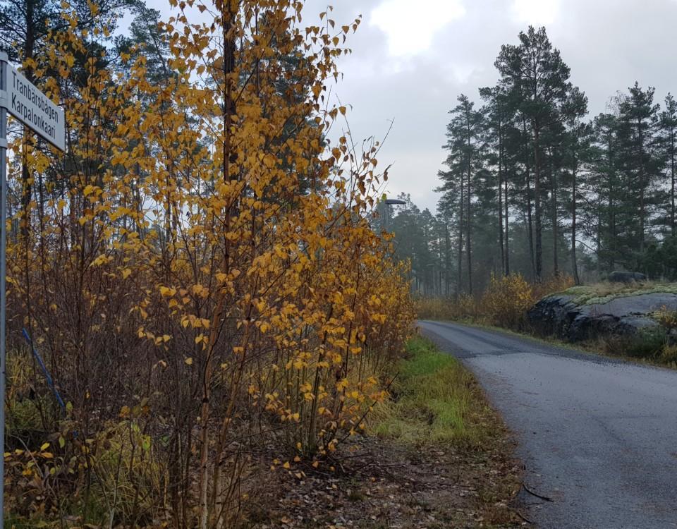 Asfaltväg som efter en bit blir grus. Vägskylten Tranbärsbågen syns.