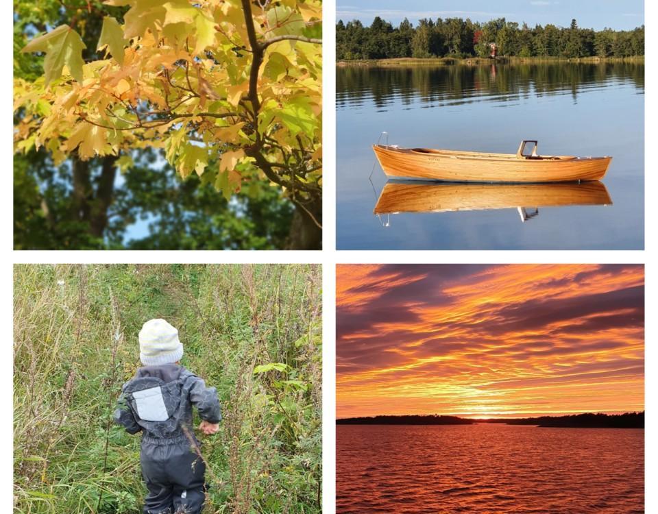 fyra landskapsbilder