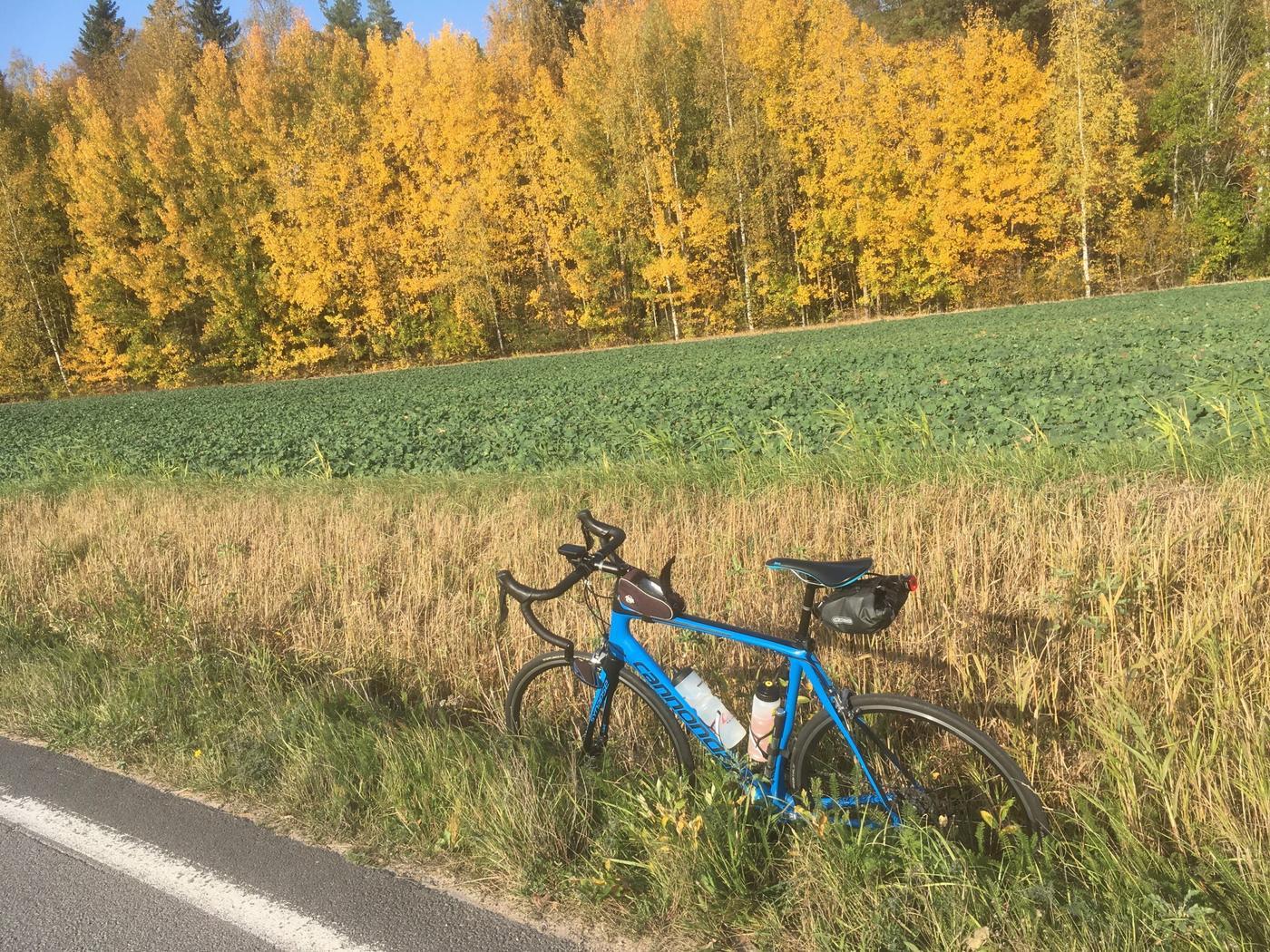 En cykel och en åker.