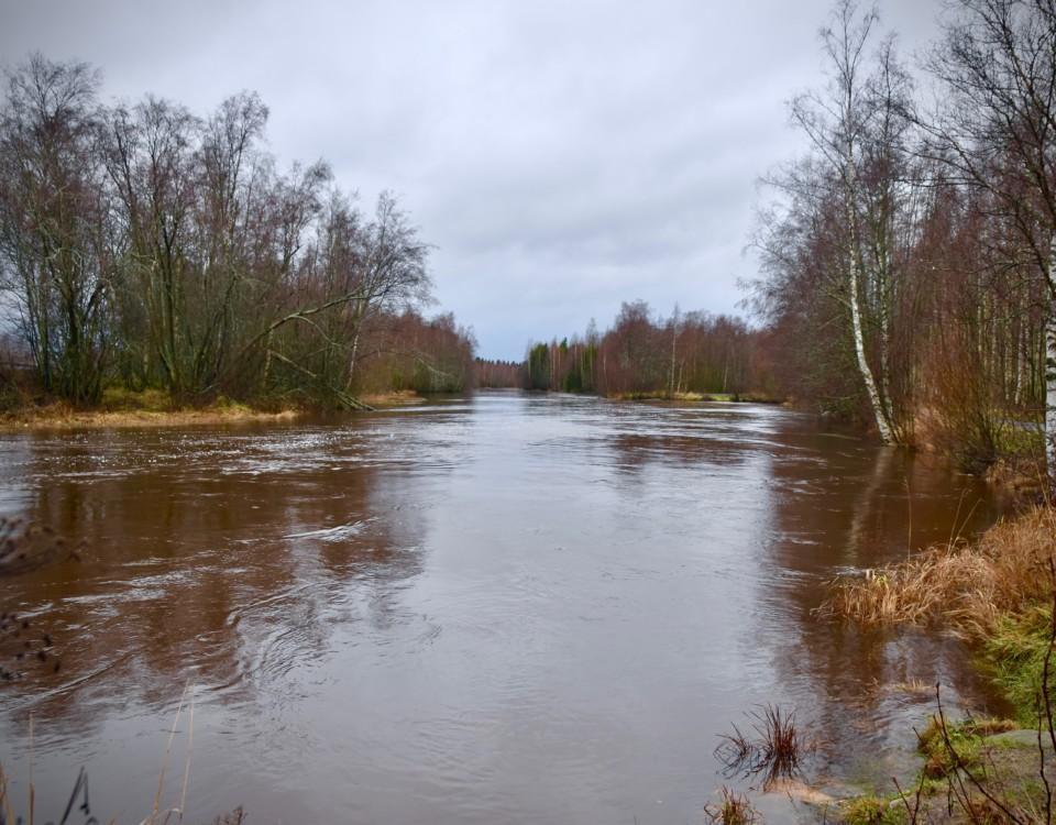 en översvämmad åker