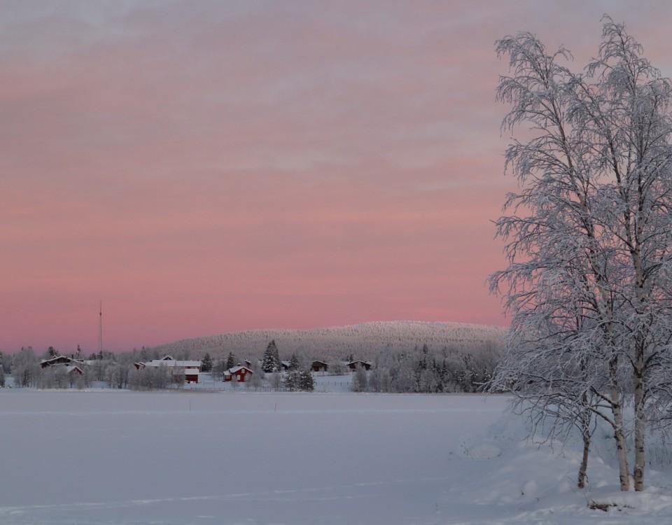 Rosa färgad himmel.