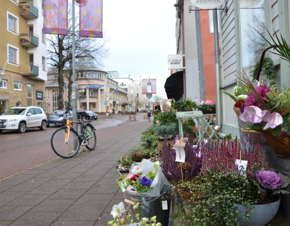 En gata med blommor i förgrunden