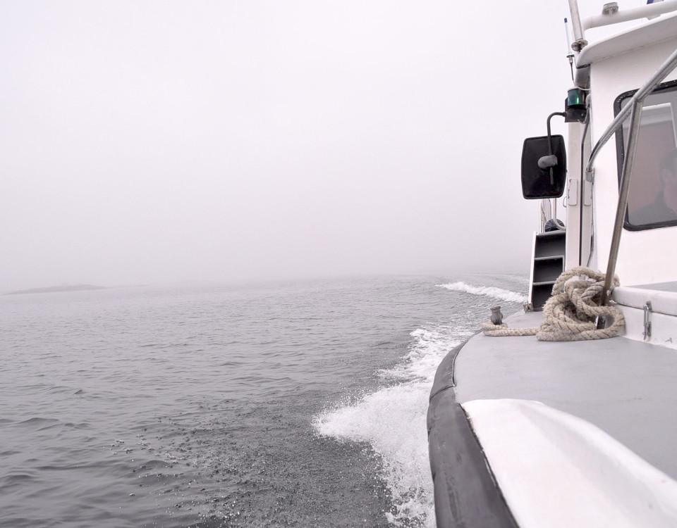en båt i dimma