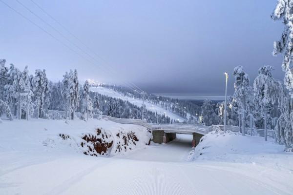 en slalombacke och ett snöigt landskap