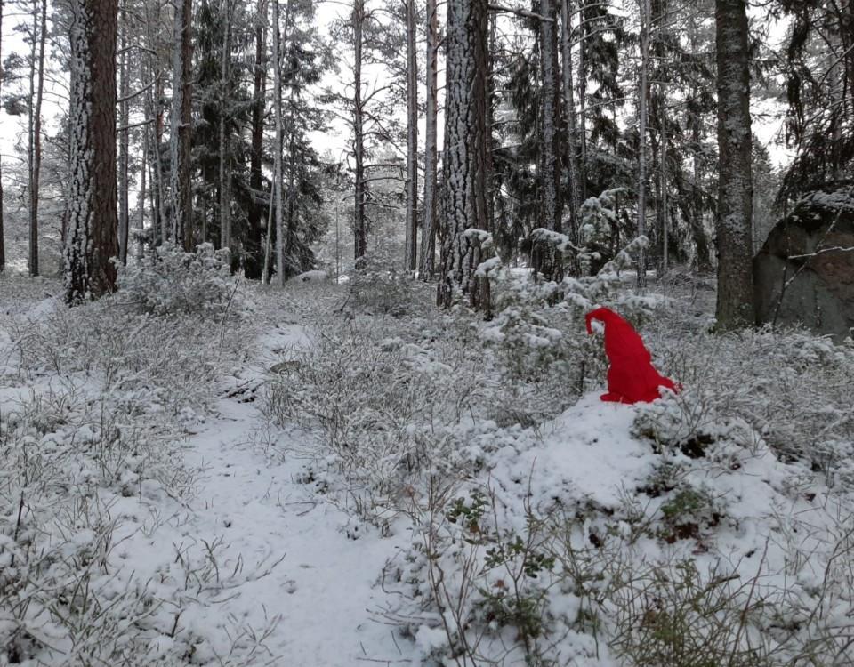 Röd tomteluva i en snöig skog
