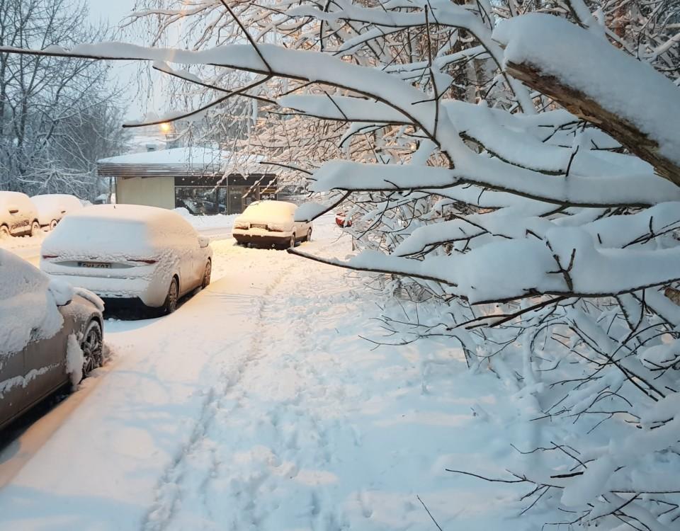 Gatubild efter snöfall, med nedsnöade bilar och träd.