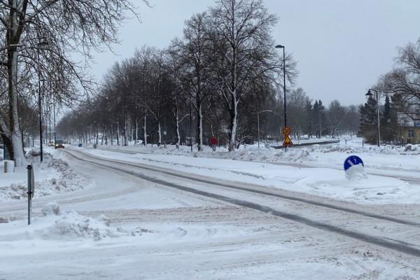 en vintrig väg