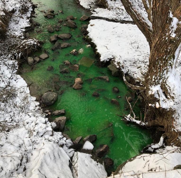 Giftgrönt vatten rinner i ett dike. Runtomkring ligger snö.