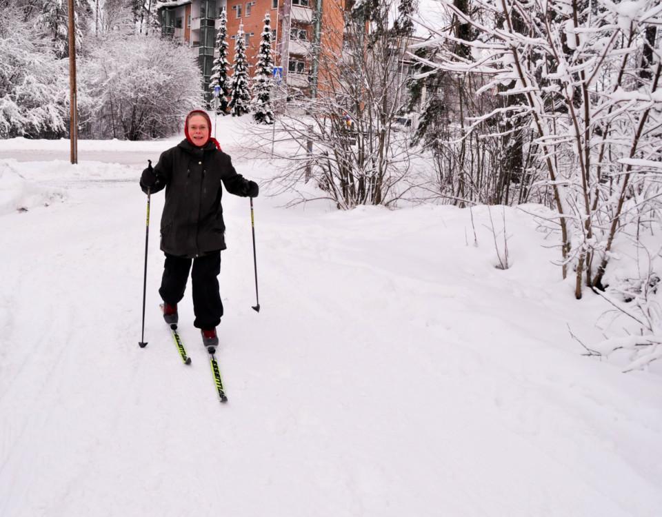 en skidåkare