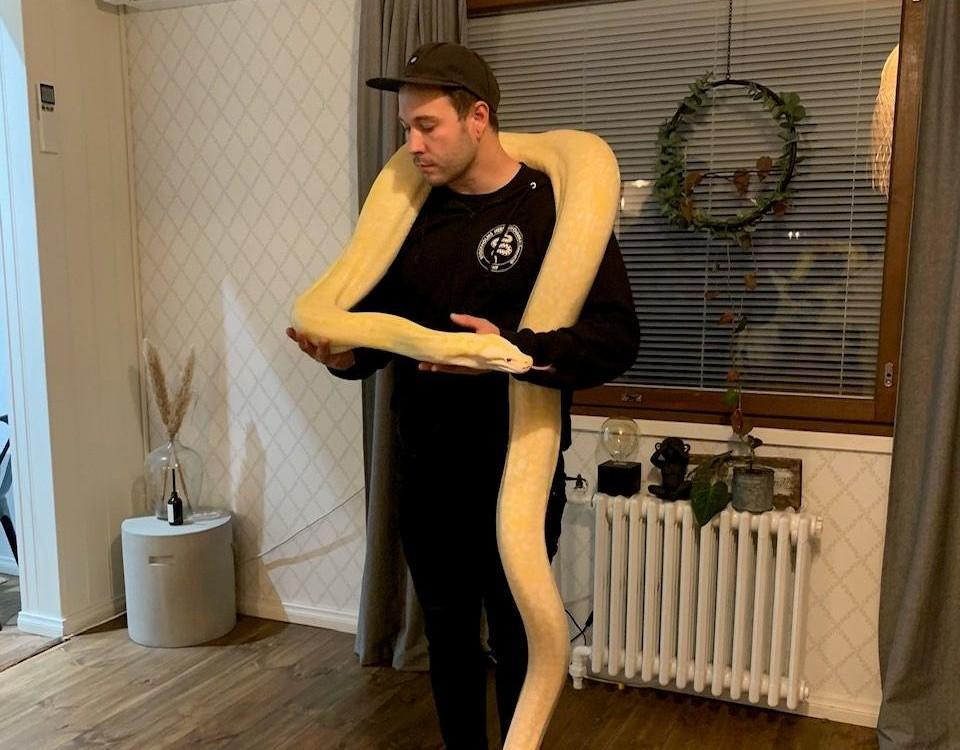 en man med en orm runt hasen