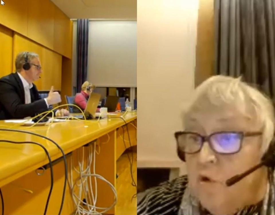 en skärmdump från ett videomöte
