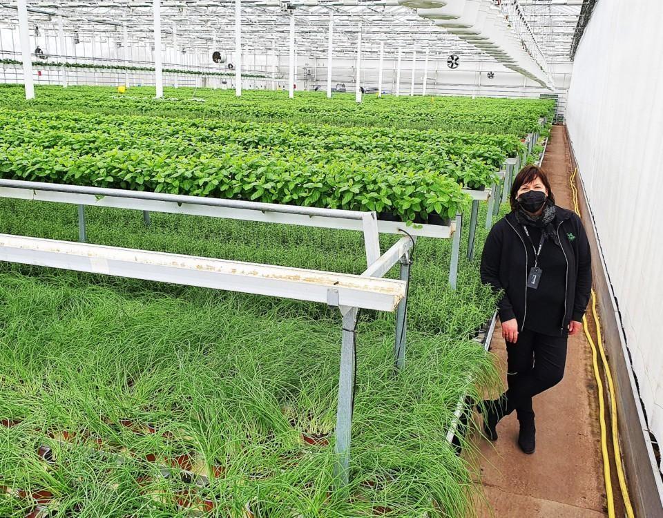 En svartklädd Liisa Lindroth i ett växthus fyllt med örter.