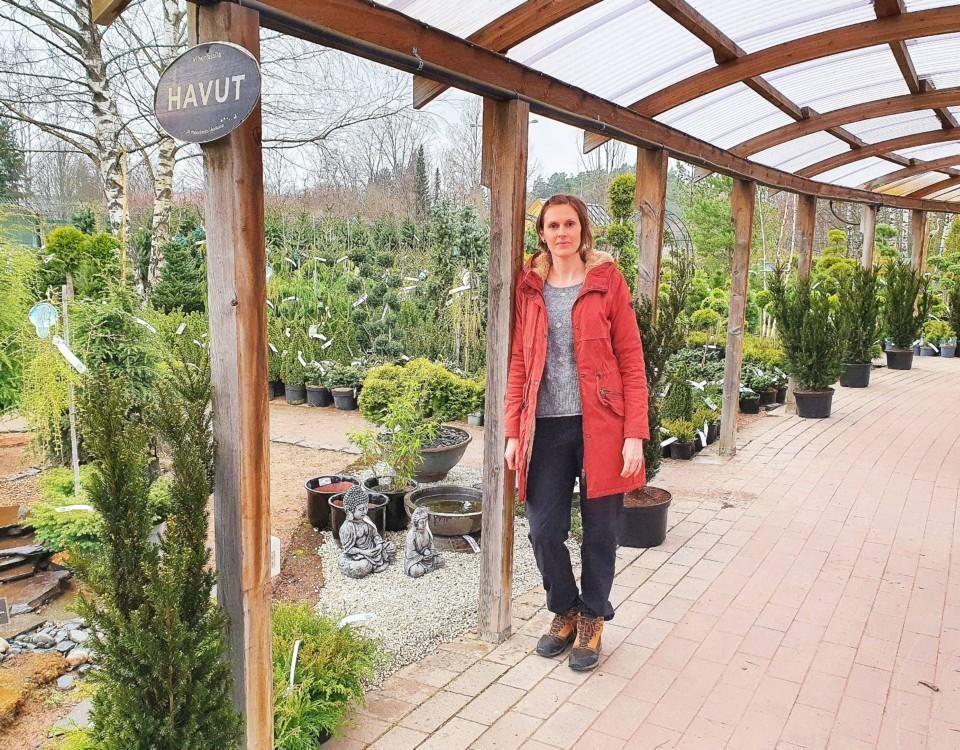Hagman framför en stor samling barrväxter.