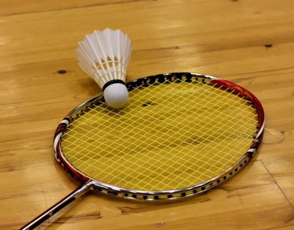 en badmintonracket och en boll