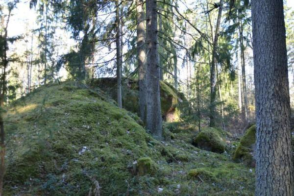 stenar och lummig skog