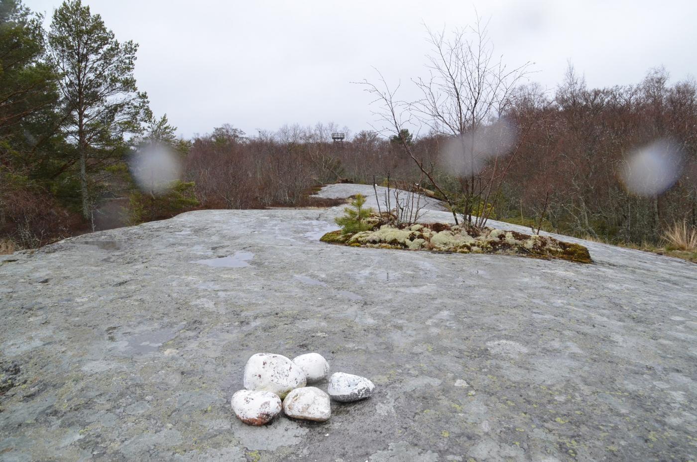 Några stenar på en klippa.
