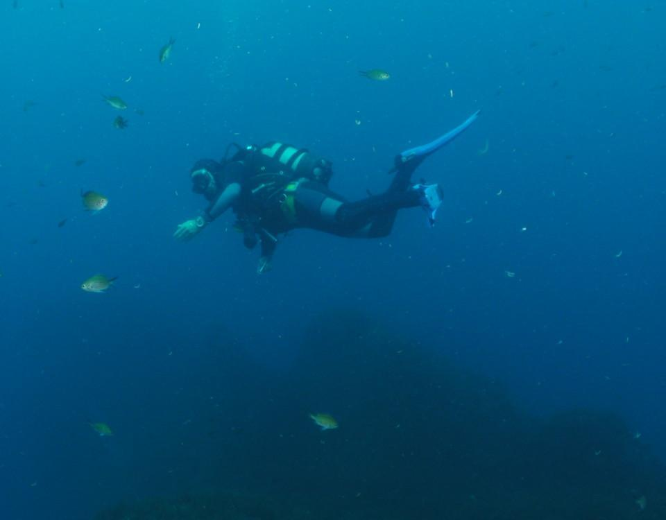 en dykare