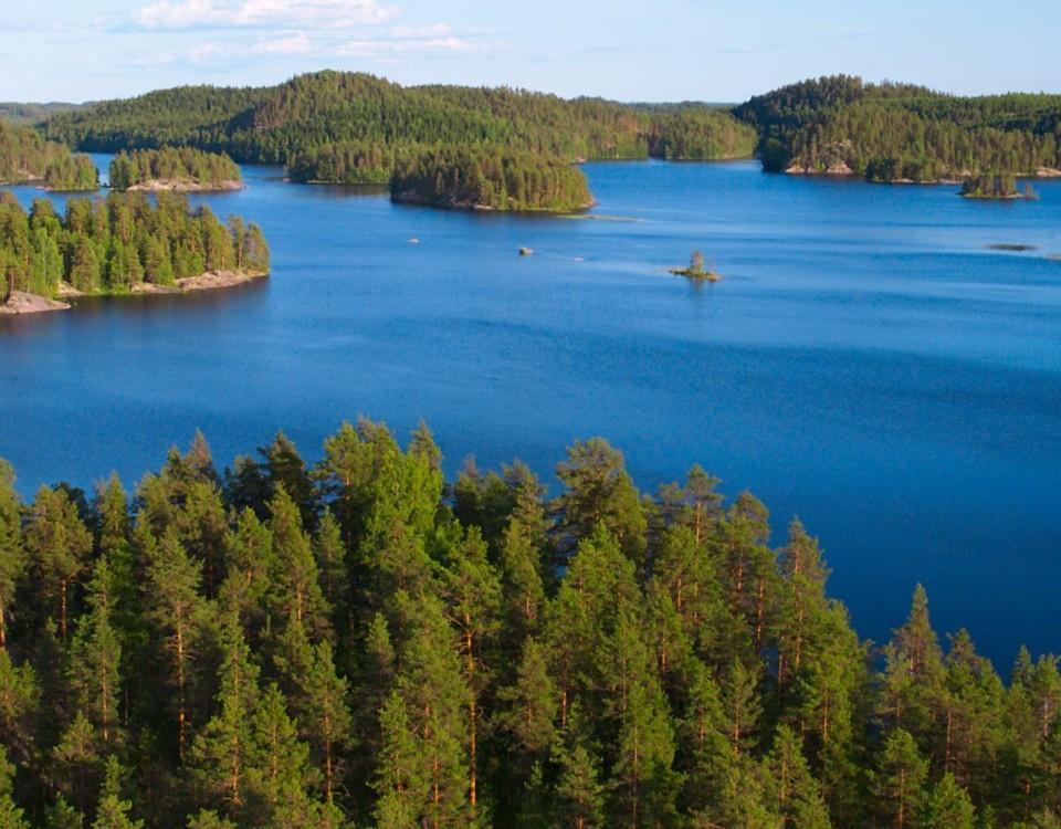 Finska skogs-och insjölandskap
