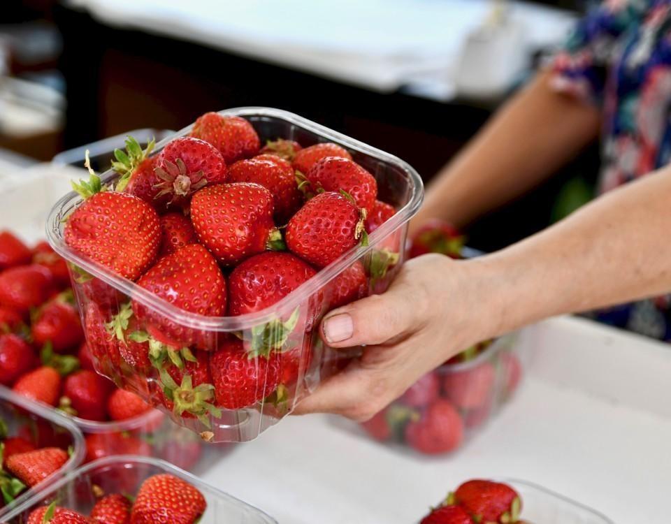 en hand håller ut en plastldåda med jordgubbar