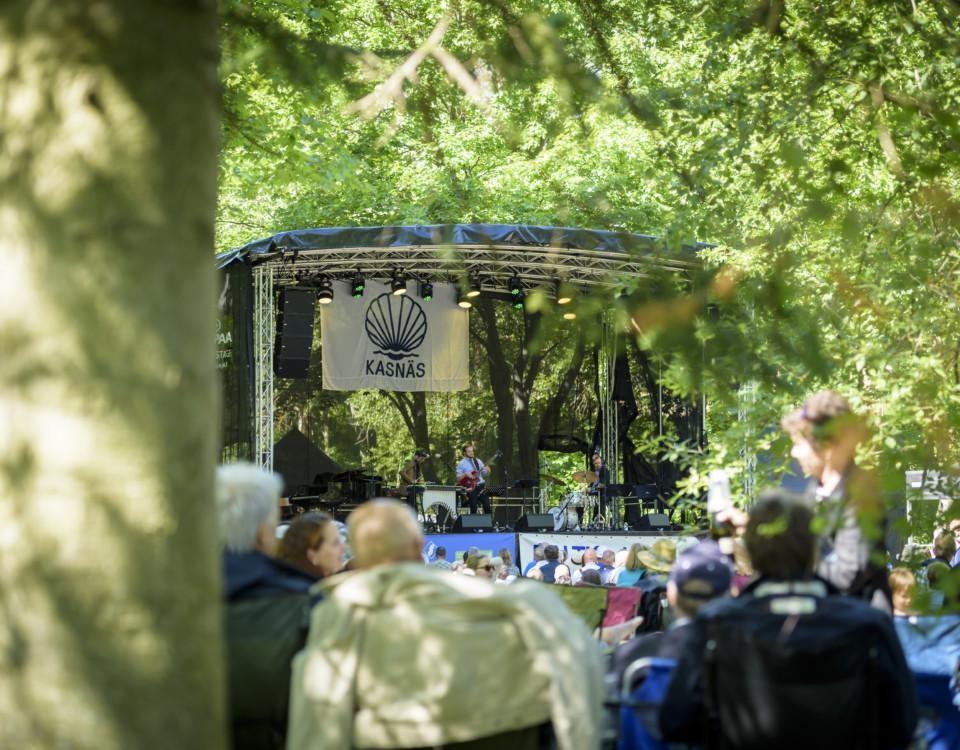 konsert som hålls i en grönskande park
