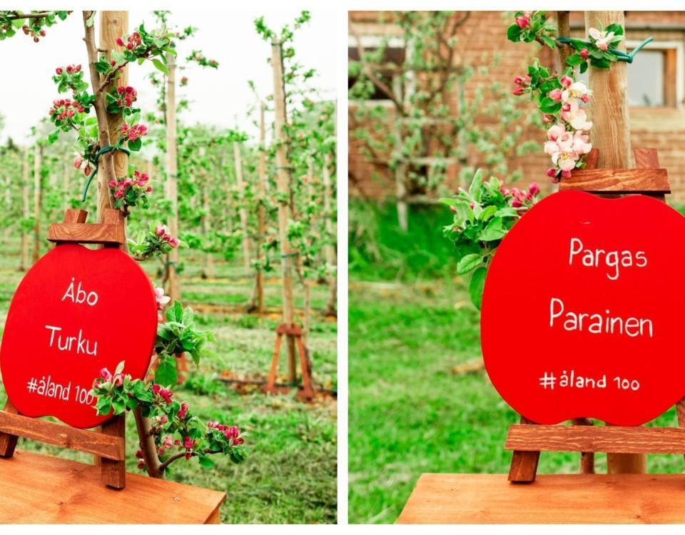 två äppelträd