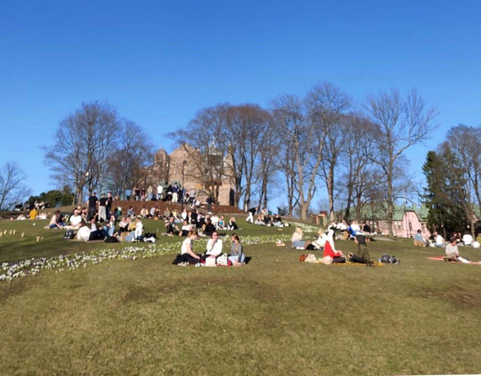 Människor sitter i solstekt park