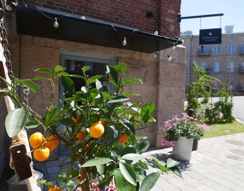 Citrusfrukter i ett litet träd utanför en dörr.